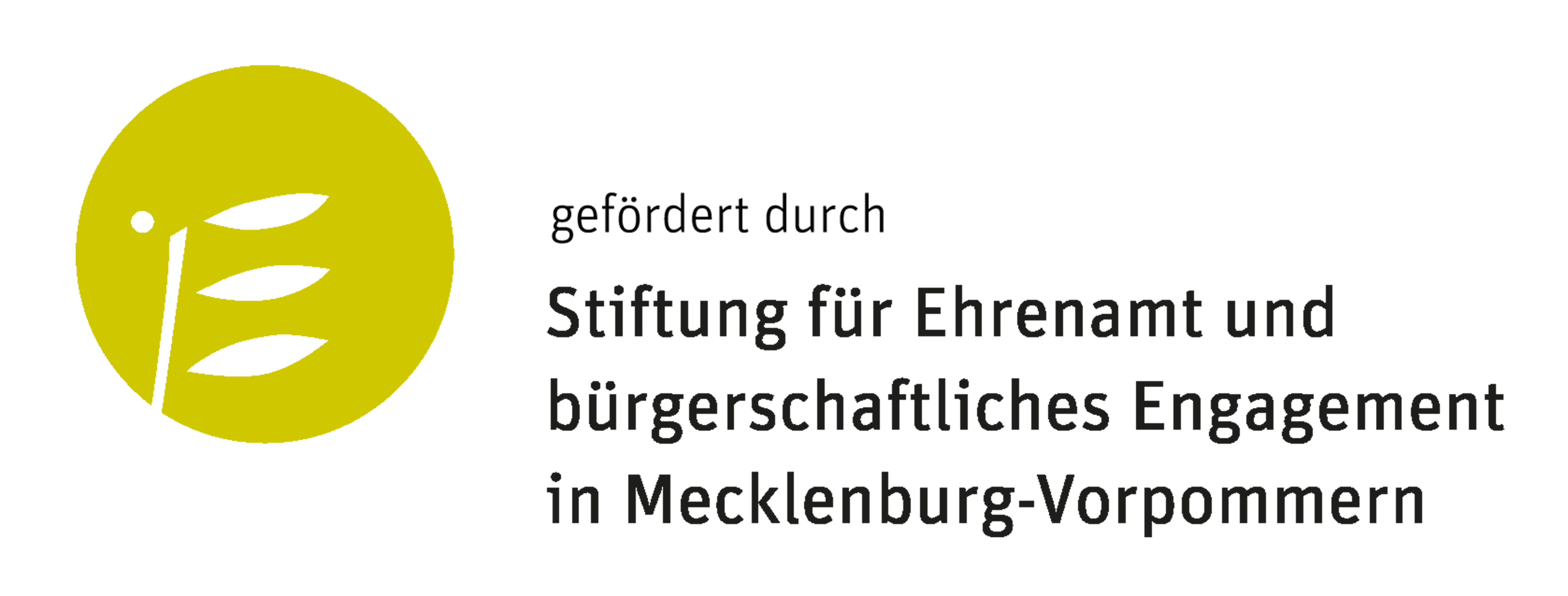 Stiftung für Ehrenamt und bürgerschaftliches Engagement in Mecklenburg Vorpommern